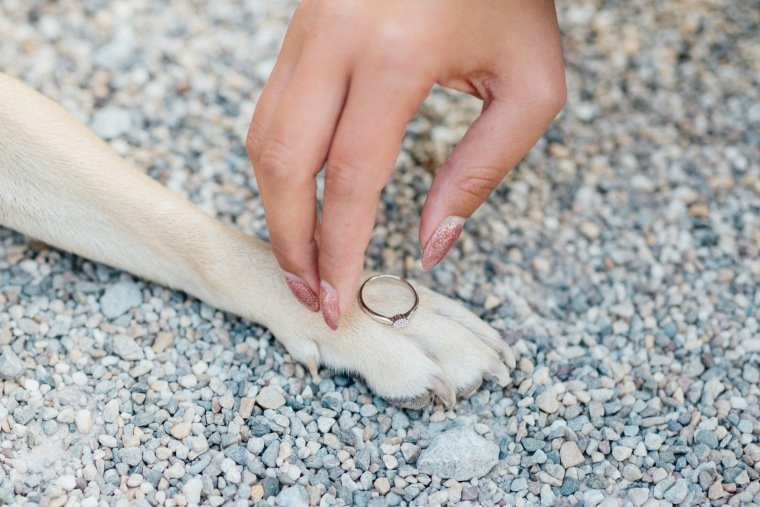 Paarfotos-Verlobung-Engangement-Shooting-Heilbronn-Botanischer-Garten-021-Hundepfote-Ring-Hand-Pfote-Verlobungsring
