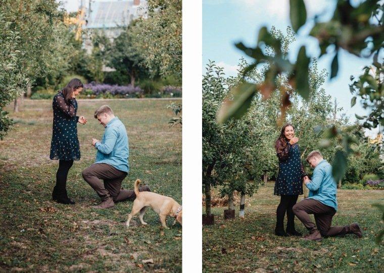 Paarfotos-Verlobung-Engangement-Shooting-Heilbronn-Botanischer-Garten-026-Verlobungsring-Antrag-Kniefall