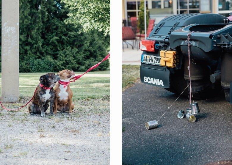 Rockabilly Hochzeit mit Hunden mit Hundefliege und Truck